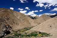 Green valley among the himalayan peaks in Ladakh.