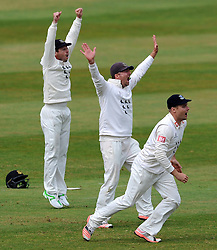 Sussex's Ed Joyce, Chris Nash and Luke Wright unsuccessfully appeal for the LBW of Somerset's Peter Trego. - Photo mandatory by-line: Harry Trump/JMP - Mobile: 07966 386802 - 06/07/15 - SPORT - CRICKET - LVCC - County Championship Division One - Somerset v Sussex- Day Two - The County Ground, Taunton, England.
