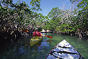 Kayaking, Florida Keys<br />
