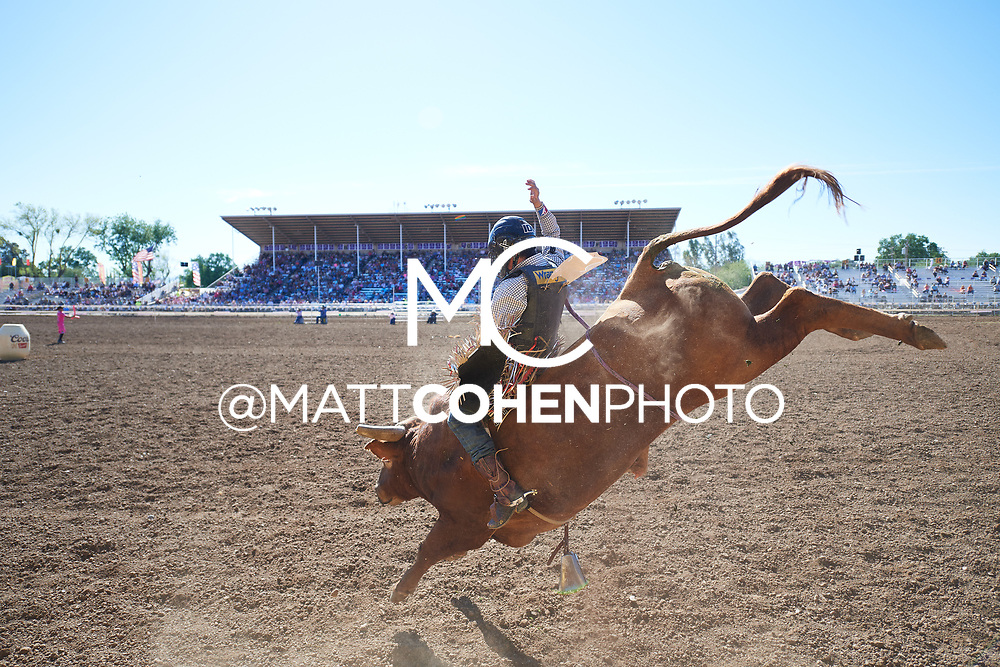 Stetson Wright / 2-1 Mortimer of Julio Moreno, Red Bluff 2019<br /> <br /> <br />   <br /> <br /> <br /> File shown may be an unedited low resolution version used as a proof only. All prints are 100% guaranteed for quality. Sizes 8x10+ come with a version for personal social media. I am currently not selling downloads for commercial/brand use.