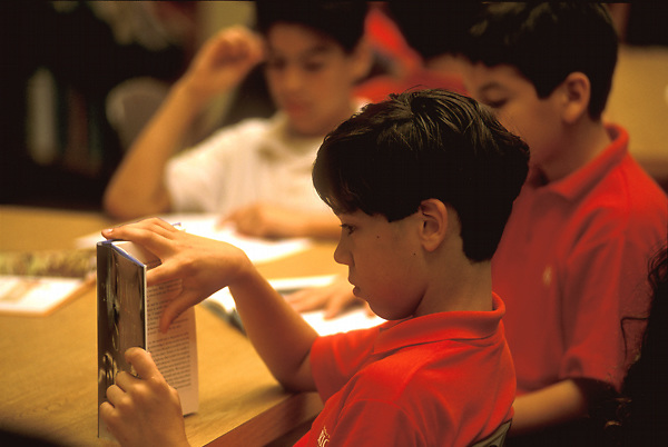 Stock photo of a group of young boys reading books in a classroom