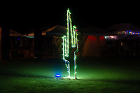 LED Cactus - https://Duncan.co/Burning-Man-2021
