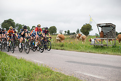 Christine Majerus (LUX) of Boels-Dolmans Cycling Team leads the peloton in the second short lap of the Crescent Vargarda - a 152 km road race, starting and finishing in Vargarda on August 13, 2017, in Vastra Gotaland, Sweden. (Photo by Balint Hamvas/Velofocus.com)