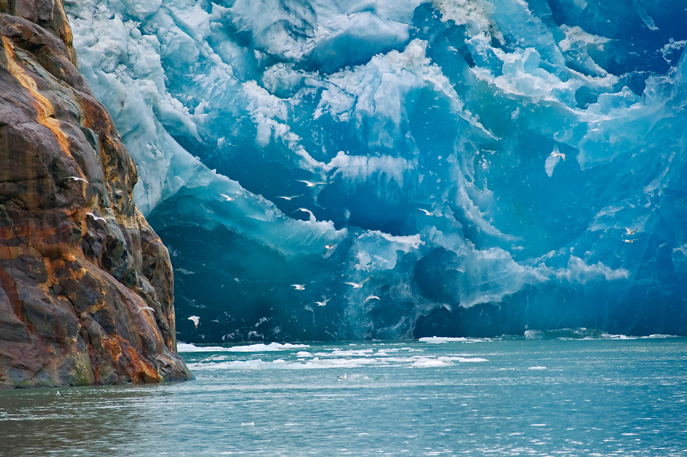 USA, Alaska, Inside Passage, Tongass National Forest, Tracy Arm - Fords Terror Wilderness Area, (North) Sawyer Glacier, South of Juneau.