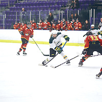during the Women's Hockey Home Game on Sat Feb 02 at The Co-operators Arena. Credit: Arthur Ward/Arthur Images