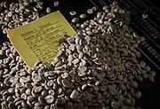 Coromandel_MG, 20 de abril de 2016<br /> <br /> Cafe premiado produzido pelo produtor Flávio Ruiz Pequini, em Coromandel, que sera lançado em capsulas pela Dolce Gusto.<br /> <br /> <br /> Foto: ALEXANDRE MOTA / NITRO