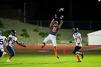 KELOWNA, BC - AUGUST 3:  Kian Ishani #8 of Okanagan Sun leaps for the catch against the Kamloops Broncos  at the Apple Bowl on August 3, 2019 in Kelowna, Canada. (Photo by Marissa Baecker/Shoot the Breeze)