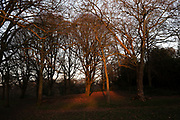 Sundown in Highbury Park in Kings Heath on 6th Febuary 2020 in Birmingham, United Kingdom. Highbury Park is a wooded area located on the borders between Moseley and Kings Heath.