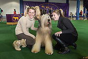 Cagney, a Biard who won in the preliminary Junior Showmanship round of the 137th annual Westminster Kennel Club Dog Show, with two admirers who both like and mimic his hair style.