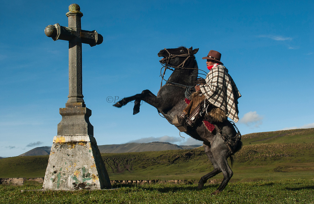 Ecuadorian Chagra (cowboy) at cross of Hacienda (ranch) rearing up on horse. <br /> Yanahurco Hacienda (Ranch) - largest privately owned ranch in Ecuadorian Andes (25.000 hectares)<br /> base of Cotopaxi Volcano<br /> Andes<br /> ECUADOR.  South America