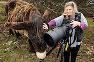 """Photographer Heidi Koch and Poitou Donkey, on assignment for photoproject """"Creature's Coiffure"""";.Fotografin Heidi Koch mit Poitou-Riesenesel, on Assignment für Fotoprojekt """"Die Frisur der Kreatur"""""""