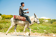 Israel, West Bank, Palestine, Samaria, Dotan Valley, Young Palestinian on a donkey .