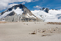 Mount Ethelweard 2819 m (9249 ft) seen from the pumice barrens above Athelney Pass, Coast Mountains British Columbia Canada