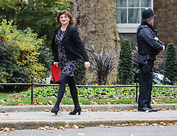 © Licensed to London News Pictures. 29/10/2019. London, UK. Nicky Morgan Secretary of State for Digital, Culture, Media and Sport arrives at 10 Downing Street for a Cabinet meeting this morning…  . As Boris Johnson tries to get his snap election poll through Parliament again this week. Photo credit: Alex Lentati/LNP