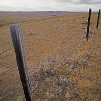 A fence separates lonely grazing lands near the Little Rocky Mountains.