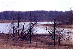 """The effects of a drought in the late 80's and early 90's leave many more miles of """"beach"""" around Evergreen Lake at Comlara Park in northwest McLean County Illinois.  The lake is one of 2 reservoirs that the City of Bloomington draws water from. Note: This image was originally produced on film and scanned to produce a digital file.  Some dust may be visible from that scan"""
