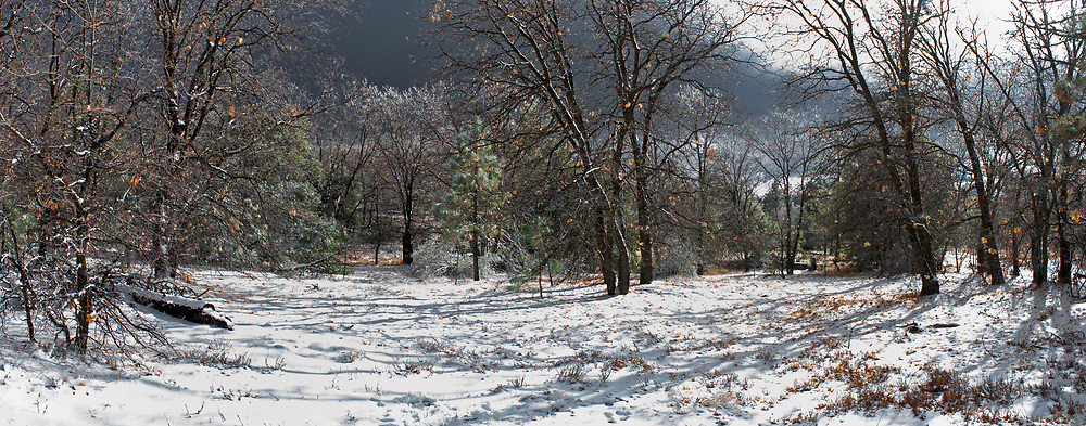 A field atop the Laguna mountains in Cleveland National Forest is seen covered in snow. San Diego County, CA