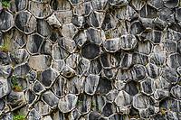 Trap rock forms a giant honeycomb in the gorge Jökulsárgljúfur.