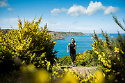 Woman running up the steps and along the North Coast cliff paths, surrounded by yellow flowers, blue sea and sunsine in Jersey in Spring