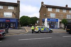 Chingford Murder