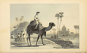 The Hirkarrah Camel From the book ' The Oriental annual, or, Scenes in India ' by the Rev. Hobart Caunter Published by Edward Bull, London 1834 engravings from drawings by William Daniell