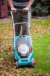 Gathering up autumn leaves using a rechargeable electric mower