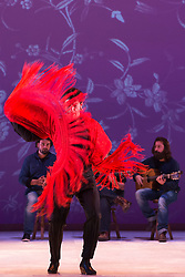 "© Licensed to London News Pictures. 20/02/2015. London, England. Pictured: Eduardo Leal performing. Ballet Flamenco de Andalucía perform ""Las Cuatro Esquinas"" from their production ""Images: 20 Years"" during the Flamenco Festival London 2015 at Sadler's Wells Theatre. The show runs from 20-21 February with the festival running from 16 February to 1 March 2015.  Photo credit: Bettina Strenske/LNP"