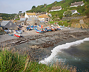 The historic and attractive fishing village of Cadgwith Cove on the Lizard Peninsula, Cornwall, England