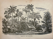 Scene in the Bahamas The merchant vessel : a sailor boy's voyages to see the world [around the world] by Nordhoff, Charles, 1830-1901 engraved by C. LaPlante; some illustrations by W.L. Wyllie Publisher New York : Dodd, Mead & Co. 1884
