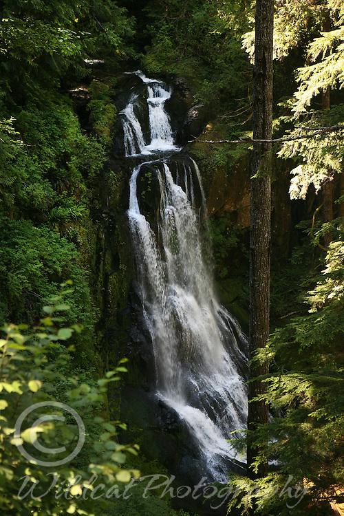 Kentucky Falls in Oregon