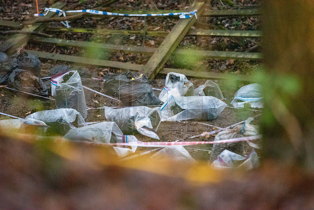 """© Licensed to London News Pictures. 10/12/2019. Gerrards Cross, UK. Police evidence bags sit on woodland floor as the Metropolitan Police Service continues a search operation in Gerrards Cross, Buckinghamshire. Police have been in the area conducting operations on Hedgerley Lane since Thursday 5th December 2019. In a press statement issued on 7th December a Metropolitan Police spokesperson said """"Officers are currently in the Gerrards Cross area of Buckinghamshire as part of an ongoing investigation.<br /> """"We are not prepared to discuss further for operational reasons."""" No further updates have been issued as of 10th December. Photo credit: Peter Manning/LNP"""