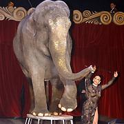 Russisch Kerstcircus 2003, olifant