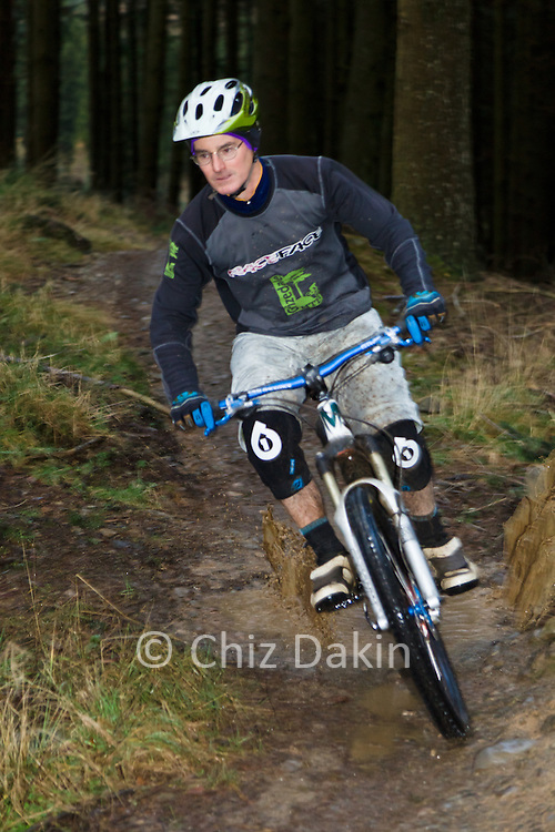 Grizedale Mountain bikes staff member descending through forest on the North Face Red Trail in Grizedale Forest.