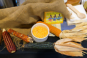 Corn, Zea mays Showcase: 'Oaxacan Green', 'Chalqueno Red', 'Early Caribbean' landrace, 'Magical Mystery Tour', white Breeder: Jay Bost, GoFarm Hawaii<br /> Chefs: Maylin Chavez of Olympia Oyster Bar and Adriana Azcarate-Ferbel, Wendy Downing & Pedro Ferbel- Azcarate of Three Sisters Nixtamal