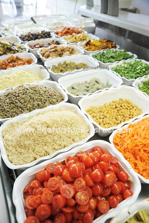 Cut and ready salad ingredients at a salad bar