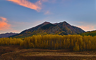 A line of golden aspens stretches across a Colorado valley just before sunrise.