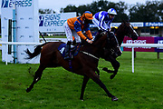 Goodwood Showman ridden by Pat Dobbs and trained by Milton Harris ridden in the Home Of Winners At valuerater.co.uk Handicap - Mandatory by-line: Ryan Hiscott/JMP - 24/08/20 - HORSE RACING - Bath Racecourse - Bath, England - Bath Races