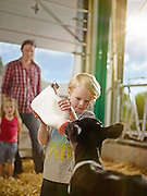 Young boy bottle feeding a calf milk. In his family dairy barn with his father and sister shot as a Environmental Portraiture on a PhaseOne IQ180