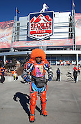 A fan in costume poses for a photo in front of the exterior of Sports Authority Field at Mile High before the Denver Broncos NFL football AFC Championship Game against the New England Patriots on Sunday, Jan. 19, 2014 in Denver. The Broncos won the game 26-16. ©Paul Anthony Spinelli