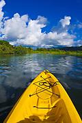 Kayak on the tranquil Hanalei River, Island of Kauai, Hawaii USA
