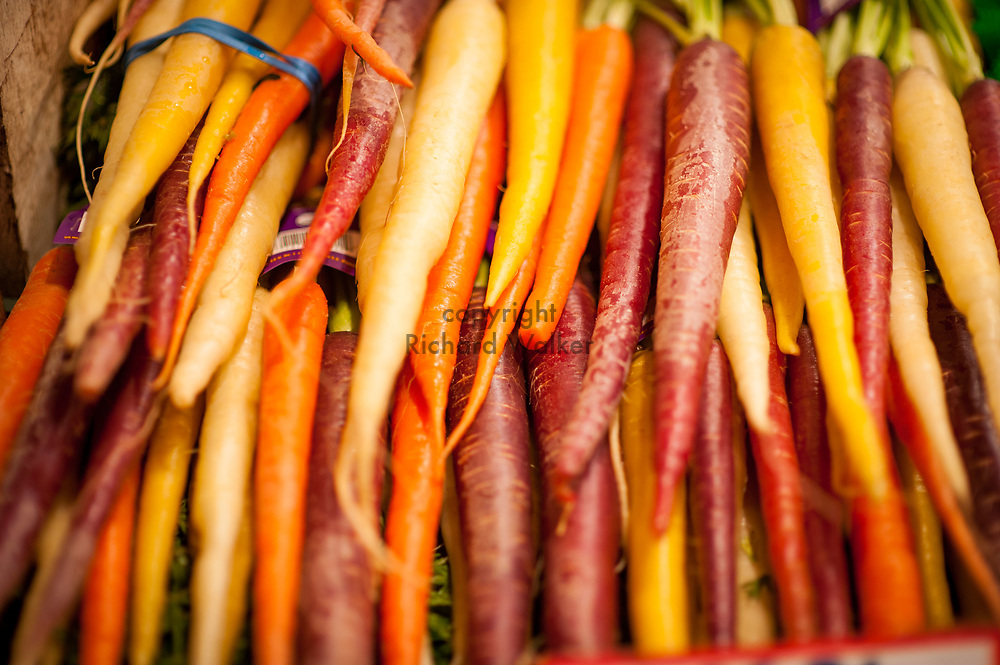 2017 DECEMBER 05 - Fresh carrots for sale at Pike Place Market, Seattle, WA, USA. By Richard Walker
