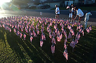 Elk Grove firefighters placed 343 flags outside their station, #74 on Laguna Park Drive, to commemorate the lives of fellow firefighters who died in the September 11, 2002 World Trade Center attacks.  Local residents were encouraged to come by the station and take the flags for free.  A trio of joggers stopped and took a couple of flags and then continued on their early morning way, Saturday, September 11, 2004.