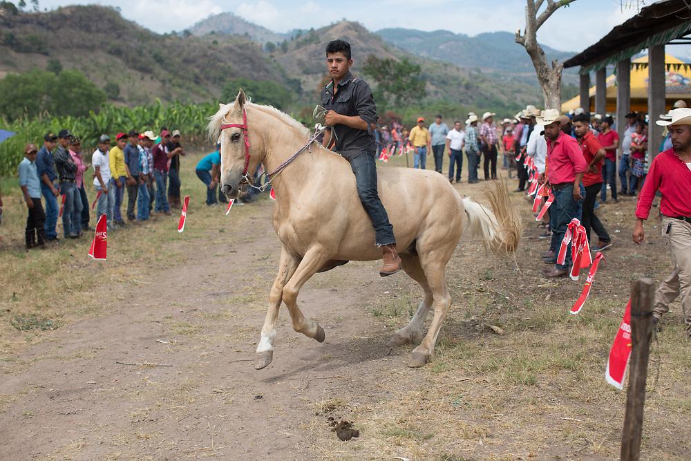 Bareback horse races at Mauro Cueva's farm near Copán Ruinas