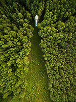 Aerial photography of a lighthouse surrounded by a forest in Estonia.