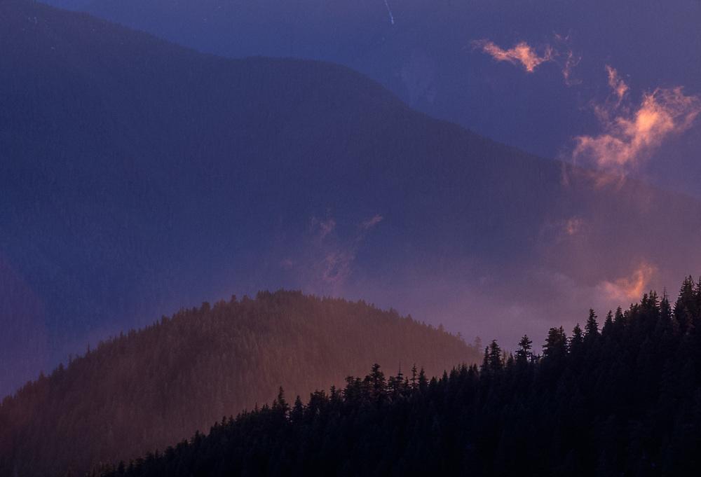 Lillian River Valley viewedv from Hurricane Ridge, evening light, winter, Olympic National Park, Washington, USA