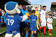 mascot during the EFL Sky Bet League 1 match between AFC Wimbledon and Portsmouth at the Cherry Red Records Stadium, Kingston, England on 13 October 2018.