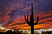 Sunrise Sunset Dawn Dusk