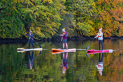 Pitlochry, Scotland, UK. 24th October 2021. Three paddle boarders on Loch Faskally enjoy the tranquility of their surroundings as the bright autumn colours of the surrounding forest are reflected in the water.  Iain Masterton/Alamy Live News.
