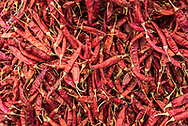 Red chillies for sale in Chaudi Market, Goa, India