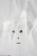 A face appears through white emulsion paint which has been smeared over a shop window, a victim of the UK recession.